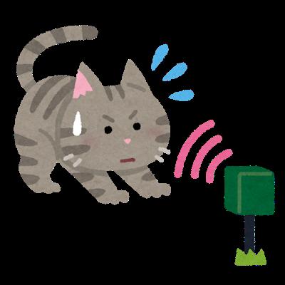 猫のフン対策